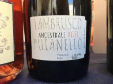 lambruscoapalazzo14