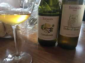 Sieman14