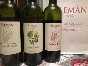 Sieman15