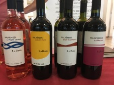 vinifera14