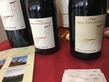 vinifera16