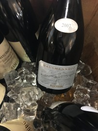 vinifera22