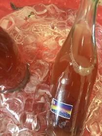 vinifera24