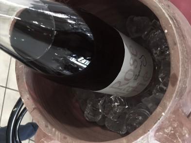 vinifera26