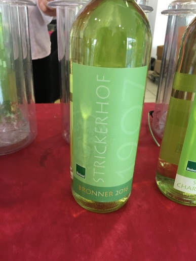 vinifera5