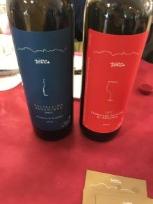 vinifera6