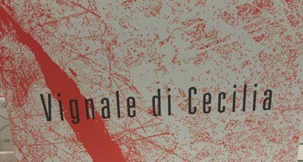 vignaledicecilia_12