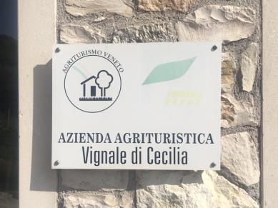 vignaledicecilia_8