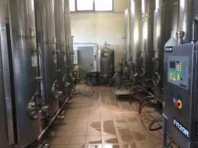 vinicio_bronzo (20)