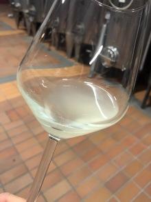 gentili vini bardolino - 18