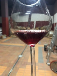 gentili vini bardolino - 19