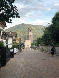 muller_thurgau_cembra (3)