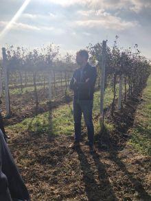 Corvezzo_Winery_Agronomo Filippo Scortegagna (10)