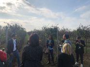 Corvezzo_Winery_in campo (19)