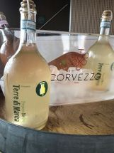 Corvezzo_Winery_sur lie (48)