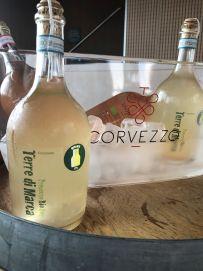 Corvezzo_Winery_sur lie (48)