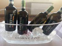 Corvezzo_Winery_terre di marca (55)
